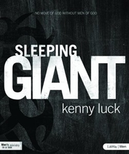 Picture of Sleeping Giant DVD Leader Kit