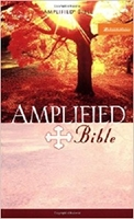 Picture of AMPLIFIED BIBLE MASS EDITION