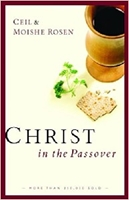 Picture of Christ In The Passover