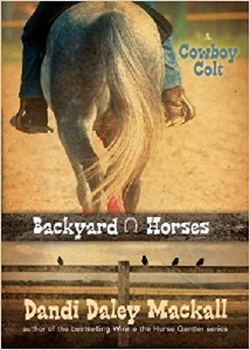 Picture of COWBOY COLT #2 BACKYARD HORSES