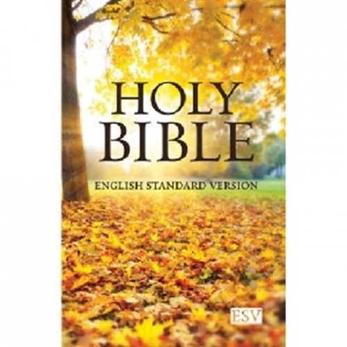 Picture of ESV Compact Bible Paperback
