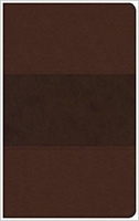 Picture of CSB Ultrathin Reference Bible Brown Leathertouch