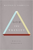 Picture of God The Trinity: Biblical Portraits