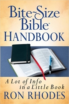 Picture of BITE SIZE BIBLE HANDBOOK