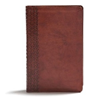 Picture of Csb Everyday Study Bible  British Tan Leathertouch