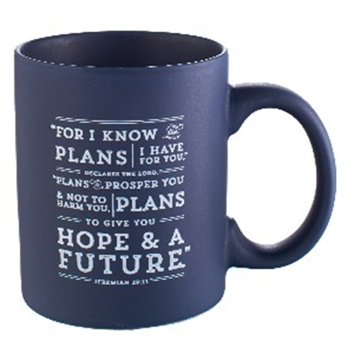 Picture of Mug I Know The Plans