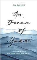 Picture of An Ocean of Grace