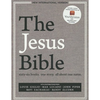 Picture of NIV The Jesus Bible Grey Linen Cloth