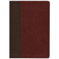 Picture of NIV Life Application Study Bible Brown