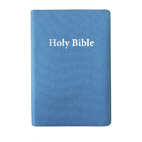 Picture of NIV Luxury Giant Print Bible Turquoise
