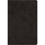 Picture of ESV Compact Value Bible