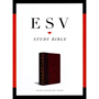 Picture of ESV Study Bible Burgundy
