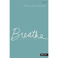 Picture of Breathe Study Journal