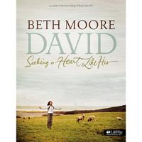 Picture of David: Seeking A Heart Like His Workbook
