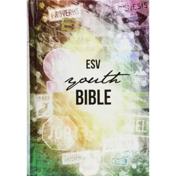 Picture of ESV Youth Bible